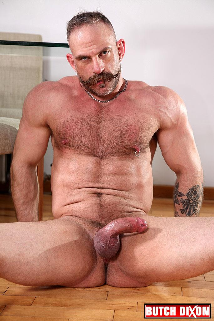 hairy gay hairy muscle gay hairy big cock gay hairy