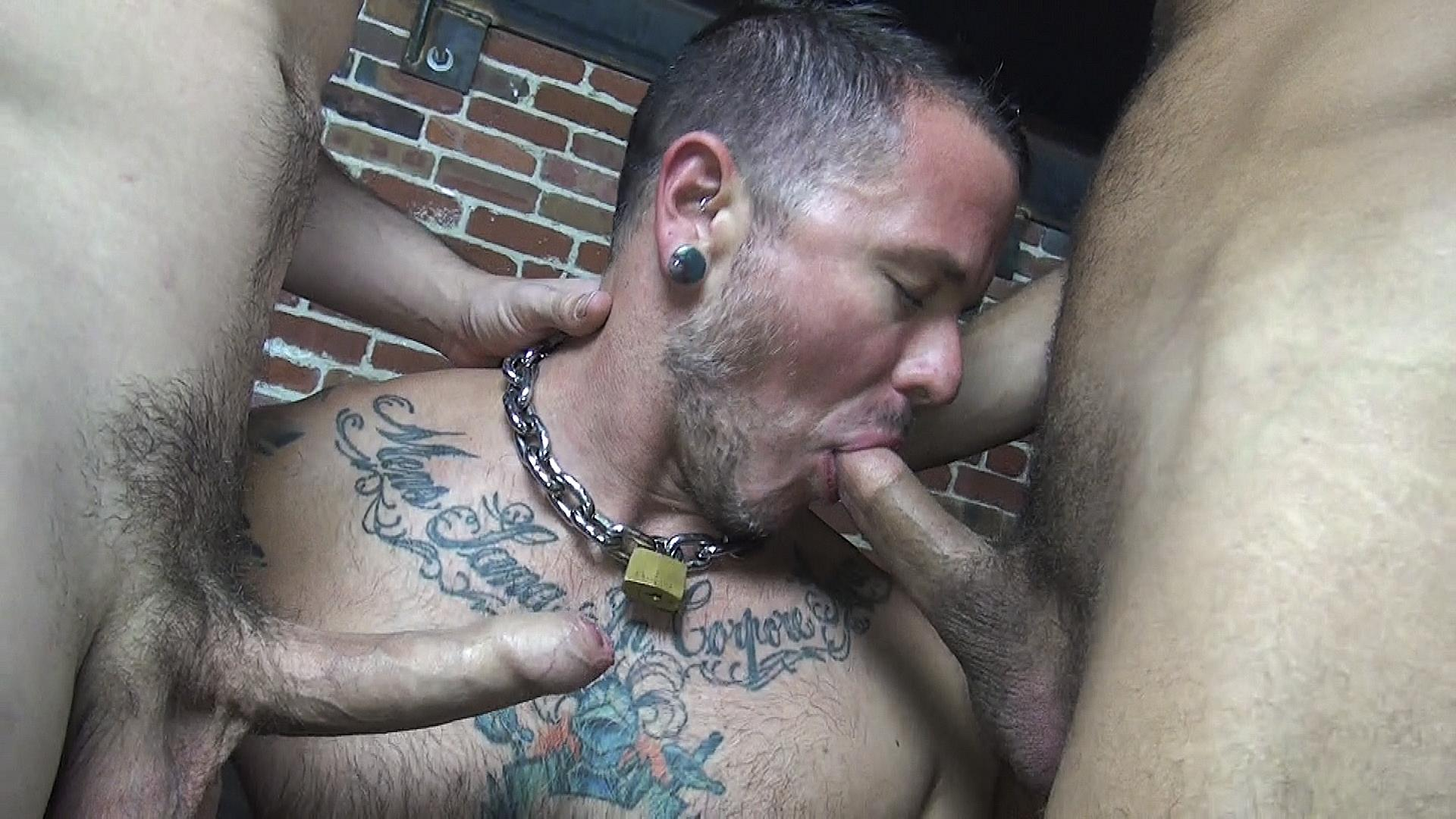 Barebacked splitting cock swallowing