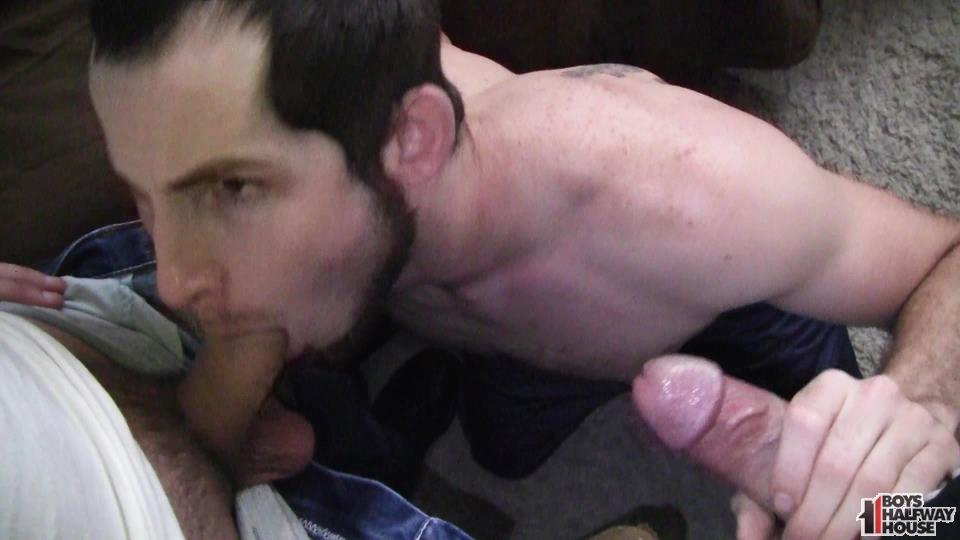 Boys Halfway House Free Download Toby Springs Bareback 03 Straight Young Man Gets Two Raw Thick Dicks At The Halfway House